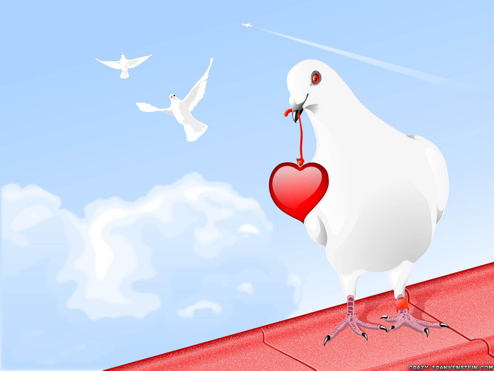 حروف لا تقرأ بالعين بل بالقلب White-pigeon-red-heart-1600x1200-love-wallpapers