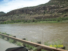 Along the Colorado River