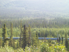 The Trans-Alaska pipeline to Valdez