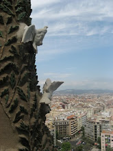 Sagrada bird view