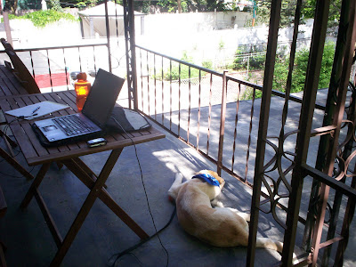 Set up to work on my back porch, with Prancis keeping me company