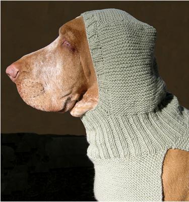 knit kit stricken f r haustiere knit for your pet. Black Bedroom Furniture Sets. Home Design Ideas