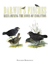 Darwin's Finches: Reexamining the Icons of Evolution