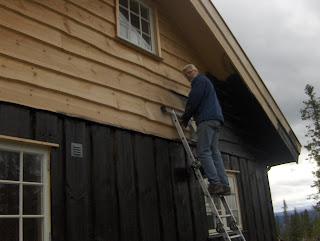 Seterbrun hytte