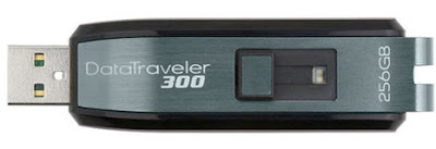 Largest USB Capacity from Kingston DT300