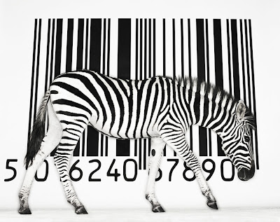 Código e zebra