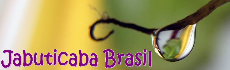 JabuticabaBrasil
