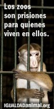 Libertad Animal Ahora!