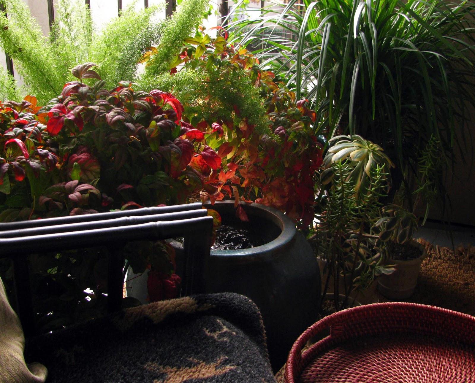 Small Apartment Balcony Garden