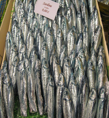 chocolate Sardines from Ile de la Re Chocolats