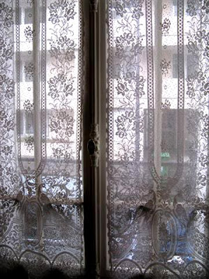 Lace Curtains Panels. Dotted Rooster Lace Curtains Sidelight ...