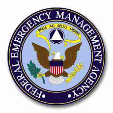 FEMA Official Seal