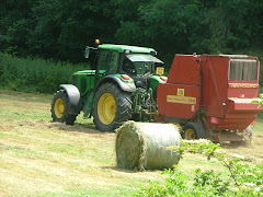 Hay making in Quarry Field