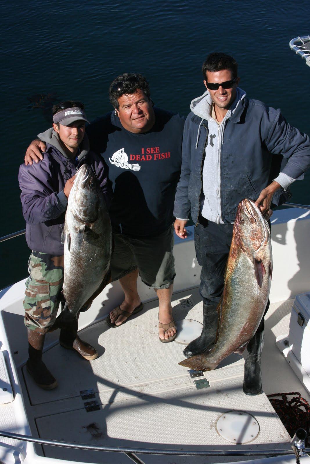 Dan 39 S Journal Tip For White Sea Bass