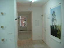 Installationsansicht / Installation Shot