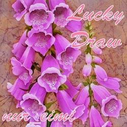 """nur_eimi Lucky draw..."""""""