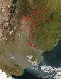 imagen incendios deforestación