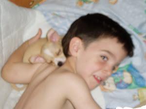 Los niños y animales..........