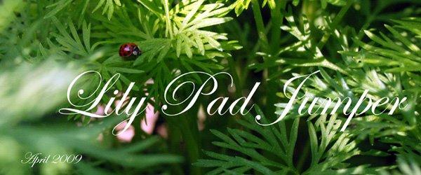 Lily Pad Jumper