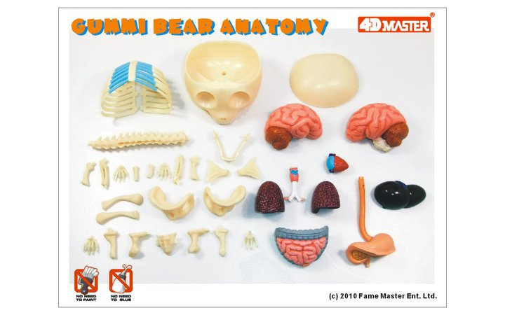 Moistproduction 8 Anatomical Gummi Bear 3d Puzzle Available This