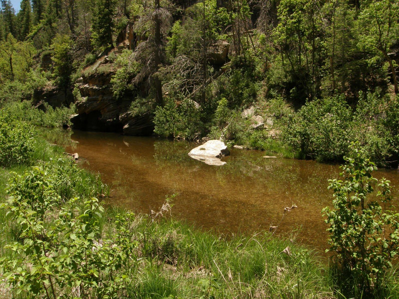 Oak creek angler june 2010 for Clear creek fishing report