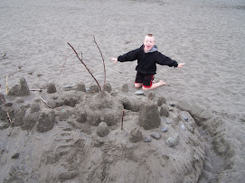 Our massive sand castle