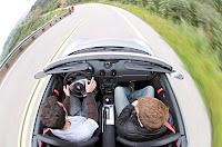 2011+porsche+boxster+spyder+photos+%282%29 Reviews : 2011 Porsche Boxster Spyder First Drive photos