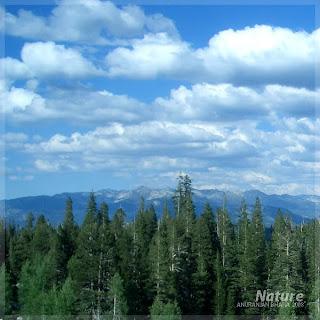 Poze natura peisaje