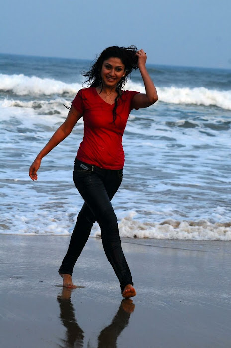 manjari phadnis in jeans panttshirt photo gallery