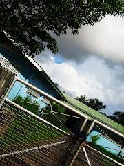 My School!