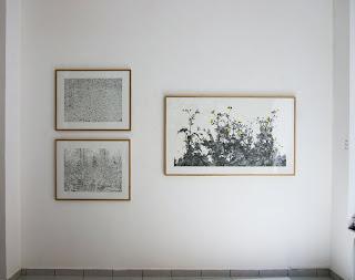 Richard Müller: exposition Prairies accrochage
