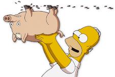 Todos contra la Porcina