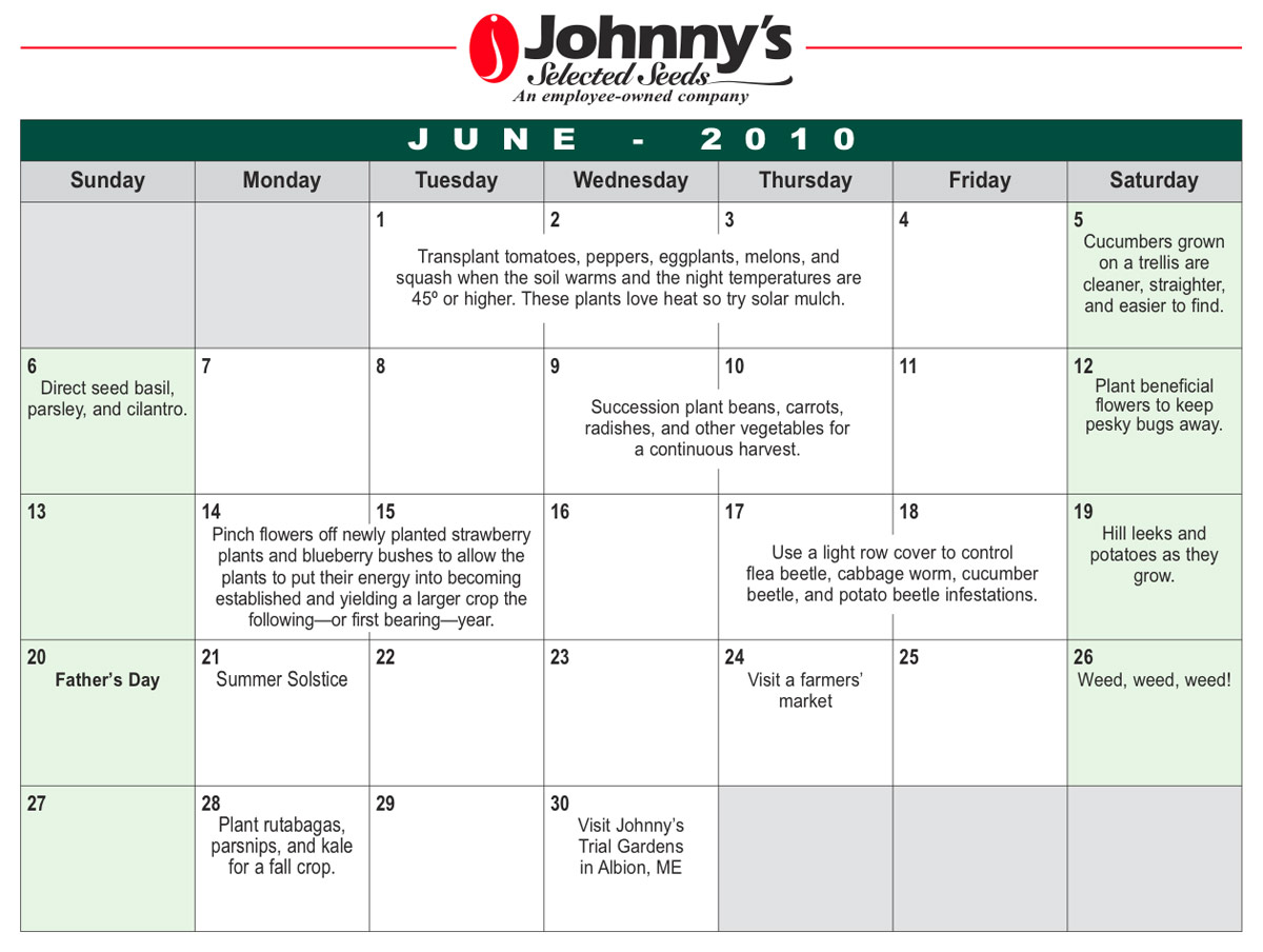 """Search Results for """"Free Printable March Calendar 2015/page/2 ..."""
