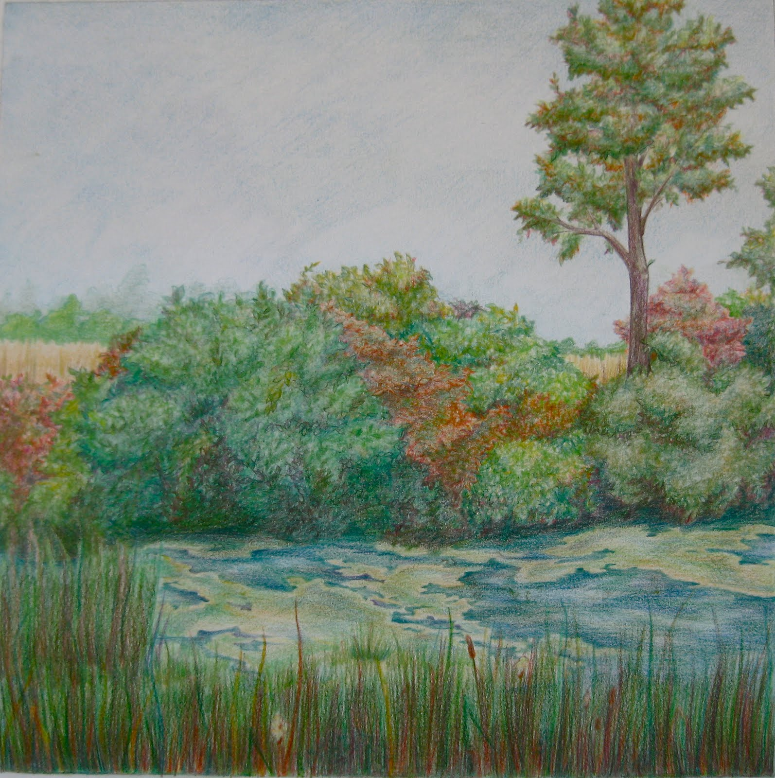 Musings of a Chocolate Lover: Landscape—Colored Pencil