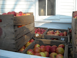 Faith Orchard Apples