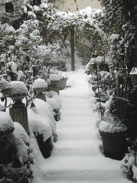 [Ginny's+Garden+under+snow]