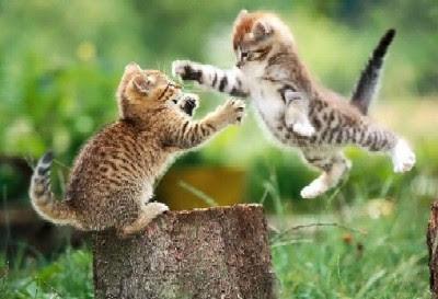 Sisäinen Taistelija