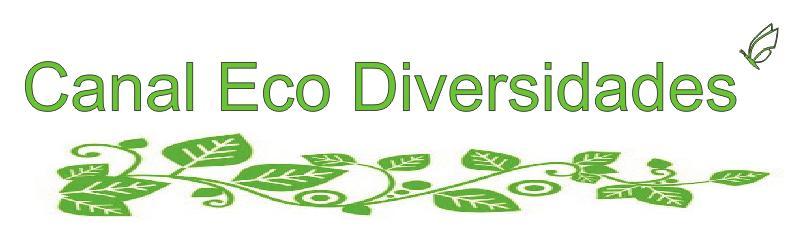 canal eco diversidades