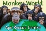 Monkey World Ape Rescue Centre (UK)