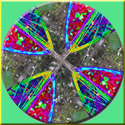 Simetria na natureza - matemática