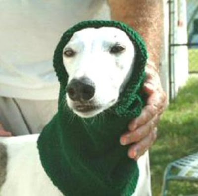 FREE GREYHOUND SNOOD KNITTING PATTERN - VERY SIMPLE FREE KNITTING PATTERNS