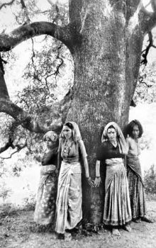 EcoSocMovements: Chipko Movement