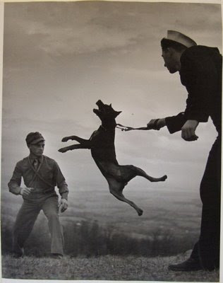 Capturing moments (inspiration) Eugene+Smith%5BA+dog+and+soldiers%5D