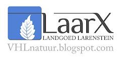 laarx banner