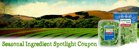 Earthbound discount coupons