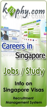 IT career in Singapore