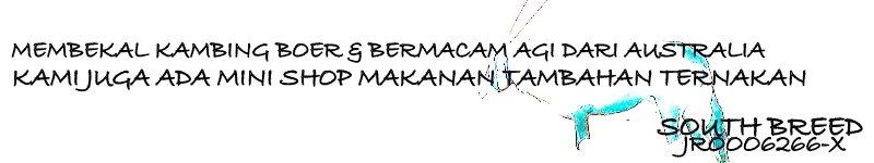 BEK2 SHOP