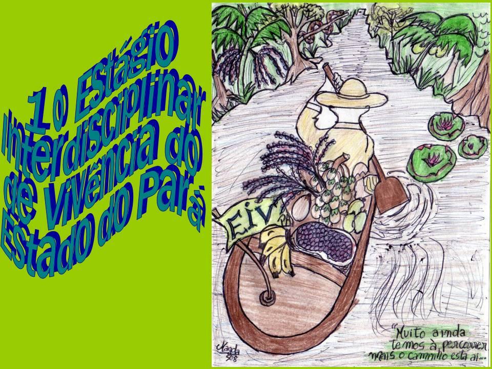 1° Estágio Interdisciplinar de Vivência do Estado do Pará - EIV Pará