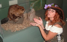 Consulting the Beaver