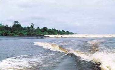 Bono Sungai Kampar